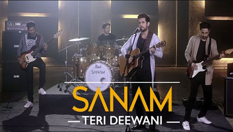 Teri Deewani Lyrics by Sanam Puri