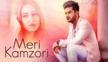 Meri Kamzori Lyrics by Ladi Singh