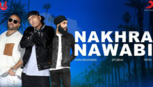Nakhra Nawabi Lyrics by Dr Zeus