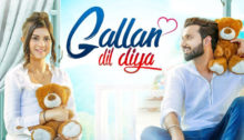 Gallan Dil Diya Lyrics - Lovie Virk