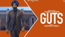 Guts Lyrics by Tarsem Jassar