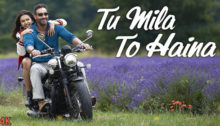 Tu Mila To Haina Lyrics from De De Pyaar De