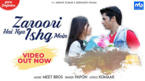 Zaroori Hai Kya Ishq Mein Lyrics by Meet Bros