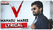 Manasu Maree Song Lyrics from V