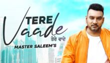 Tere Vaade Lyrics by Master Saleem